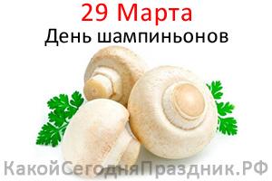 champignon-day.jpg