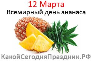 den-ananasa.jpg