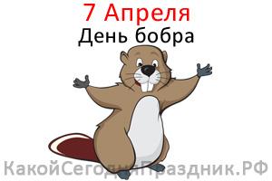 international-beaver-day.jpg