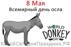 world-donkey-day.jpg