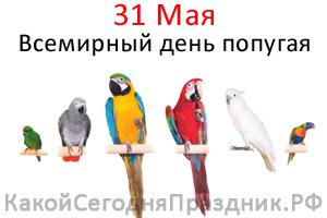 world-parrot-day.jpg